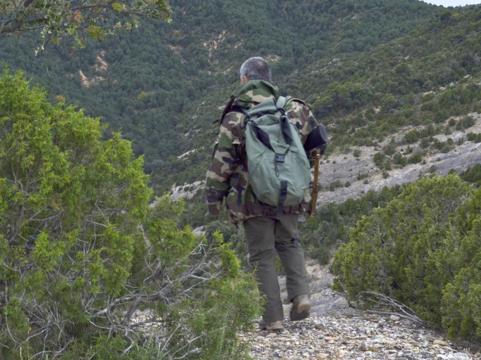 Batida al jabalí en Huesca.