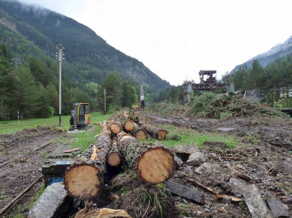 Los trabajos de desbroce en la estación de Canfranc comenzaron a finales del mes de mayo.