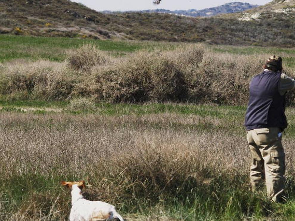 Estampa de caza en los montes aragoneses.