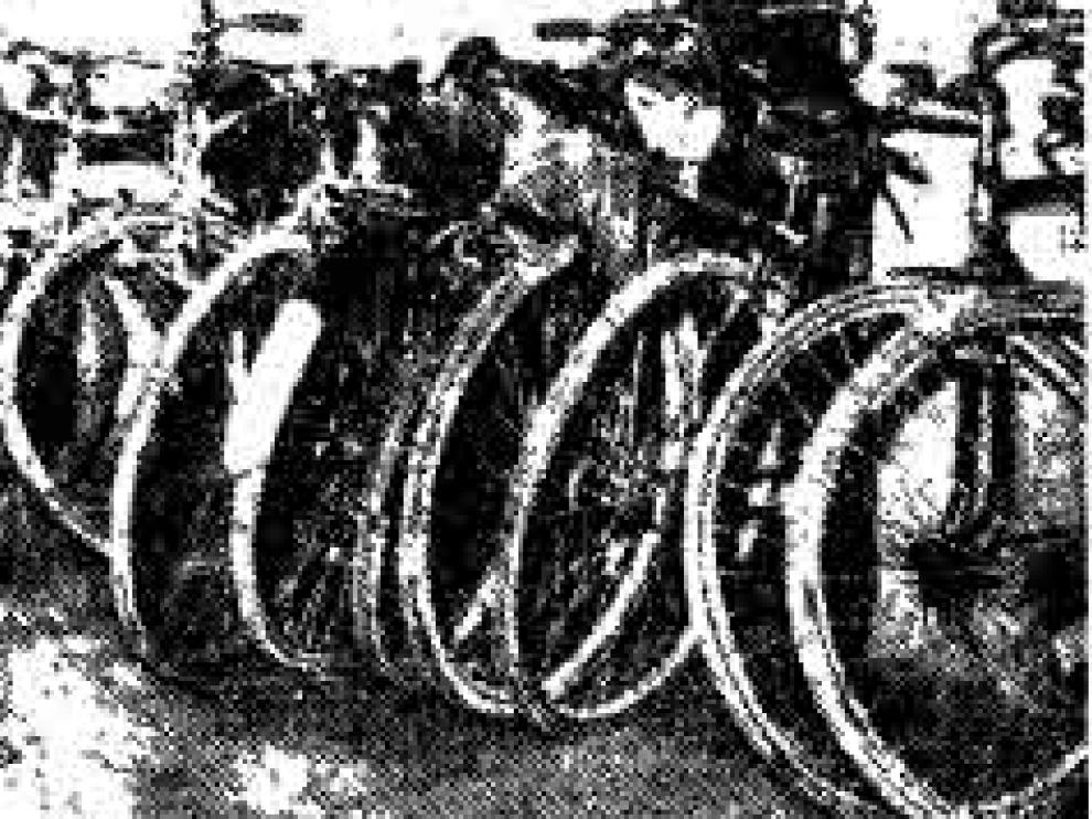 bici-copia