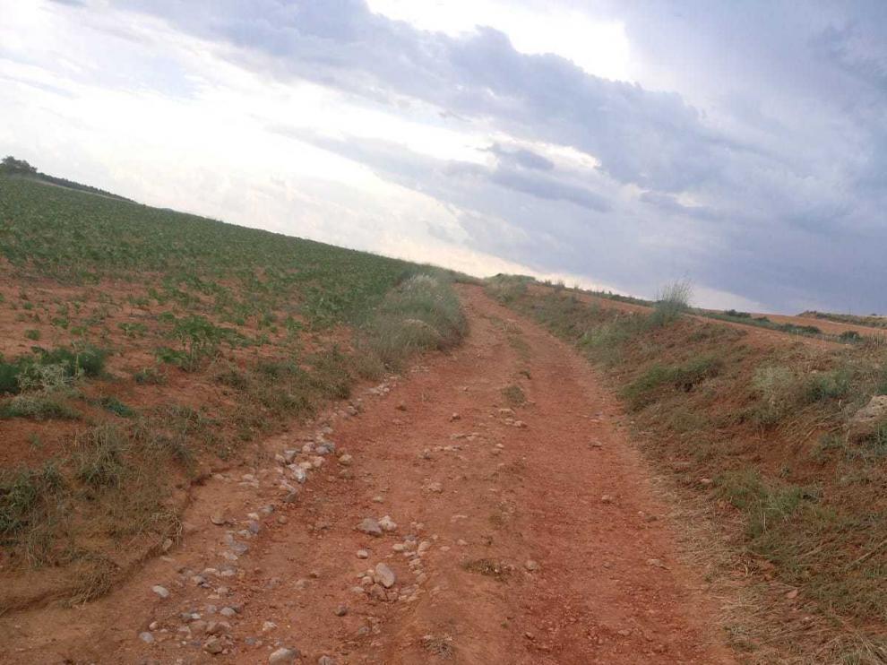 Estado en el que se encuentran los caminos de acceso a las fincas de Villarroya del Campo.