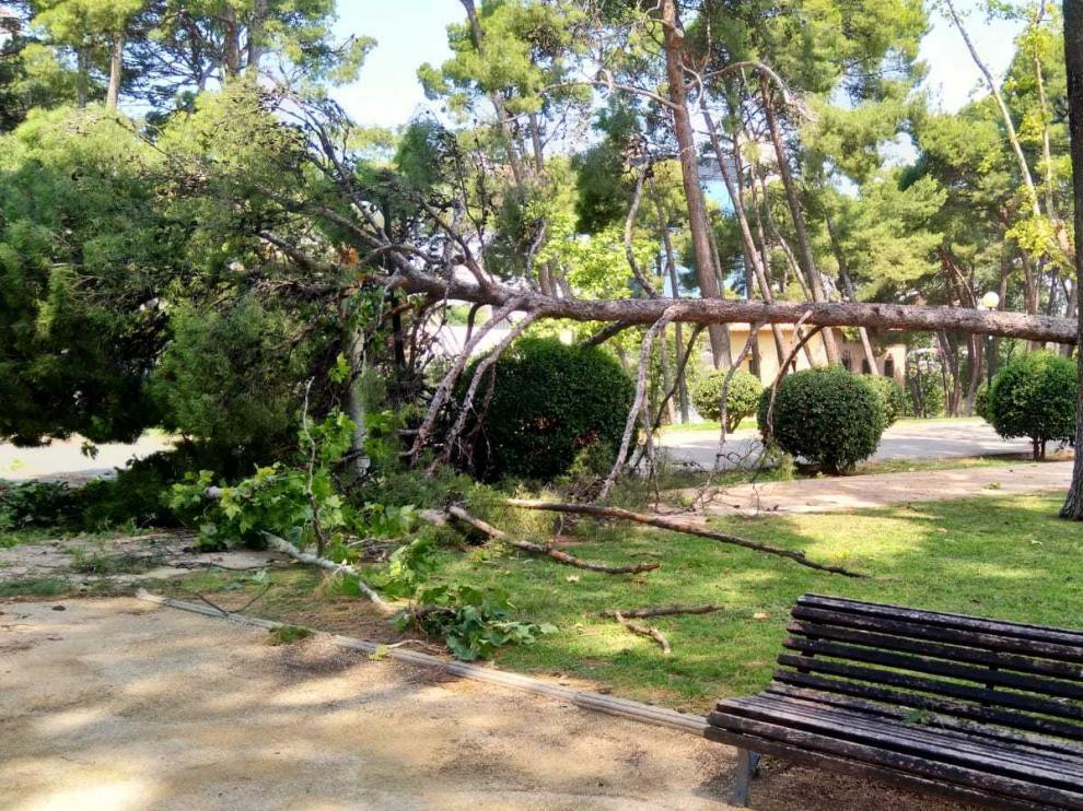 Zaragoza después de la tormenta