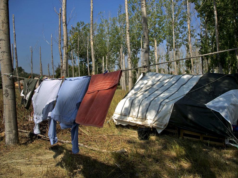 Acampada en una chopera próxima al río Jalón, uno de los asentamientos ilegales de los temporeros en Valdejalón.