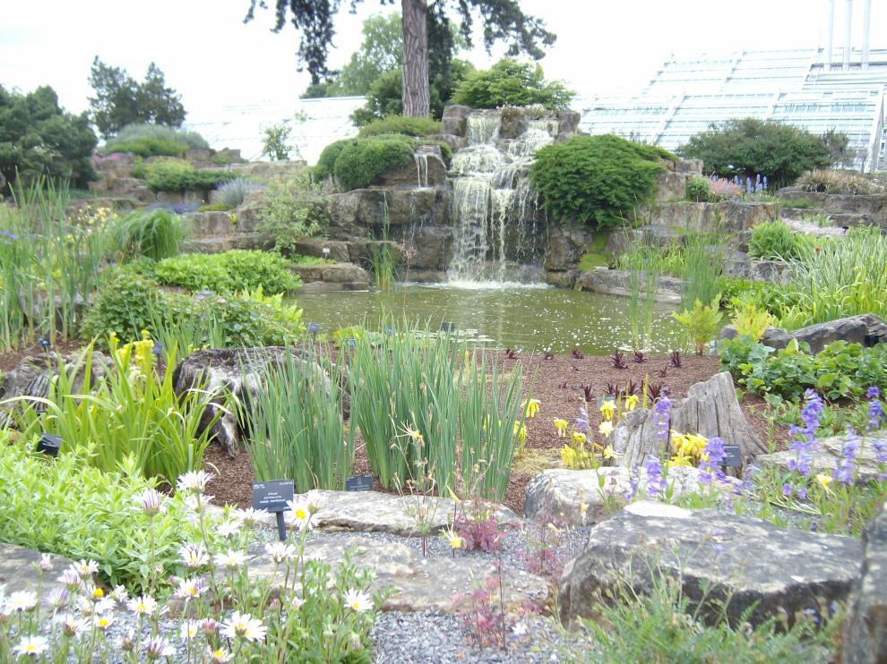 Un jardín holístico