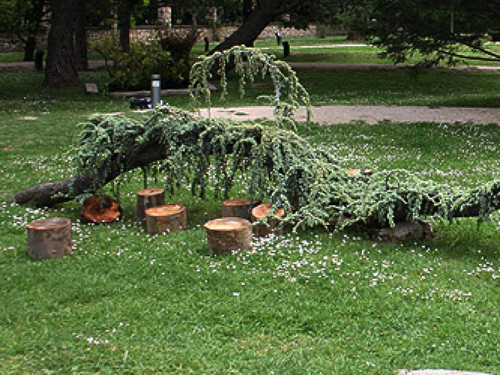 Jardín-Botánico-de-Zaragoza