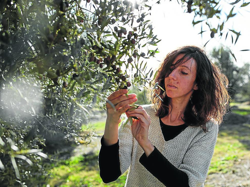 Alba Chesa recoge olivas con las que luego se elaboran la base de sus jabones.