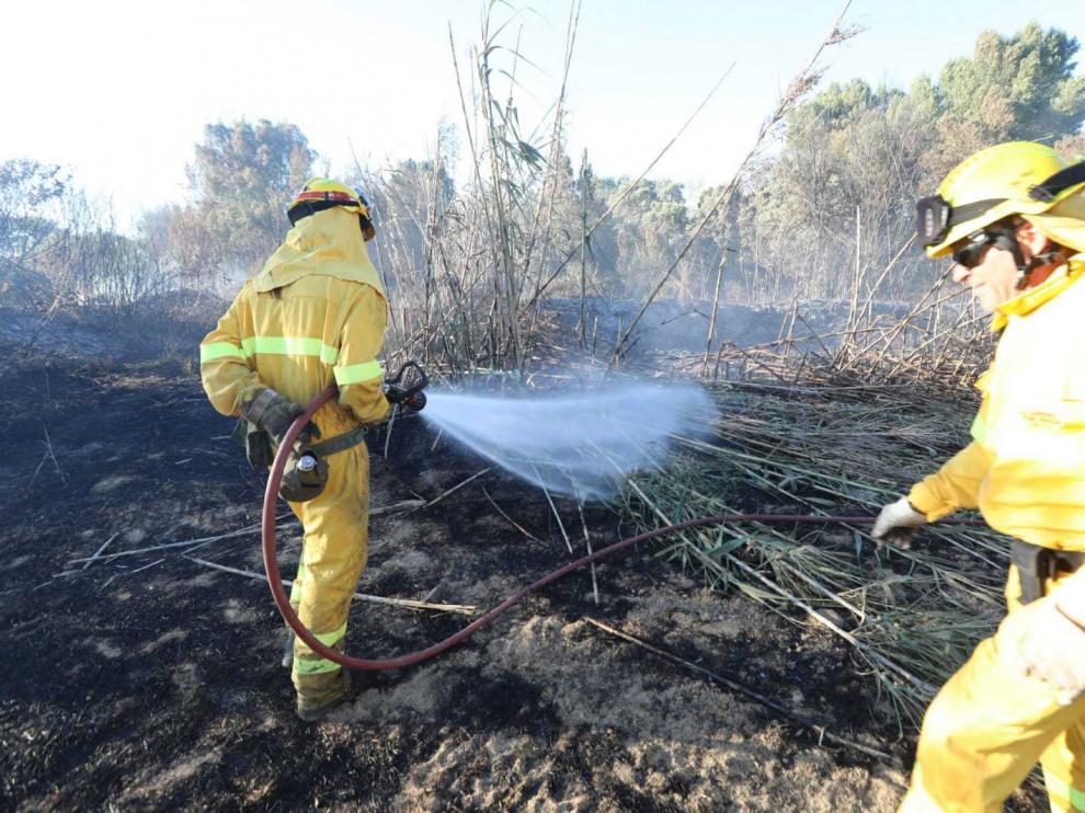 Agentes forestales en las tareas de extinción del incendio de Alcalá del Obispo.