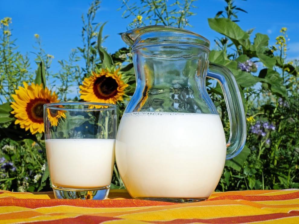 Aragón no se plantea regular la venta de leche cruda.