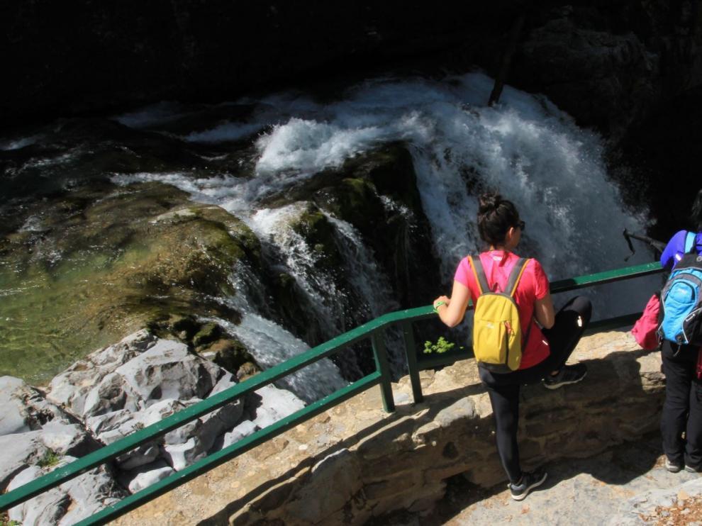 Las cascadas nos harán disfrutar durante toda la excursión al nacimiento del río Arazas.