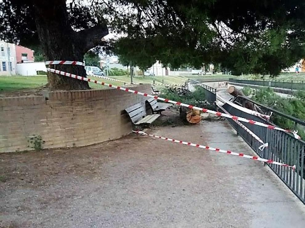 La rama cayó sobre la valla del río Isuela y rompió dos tramos