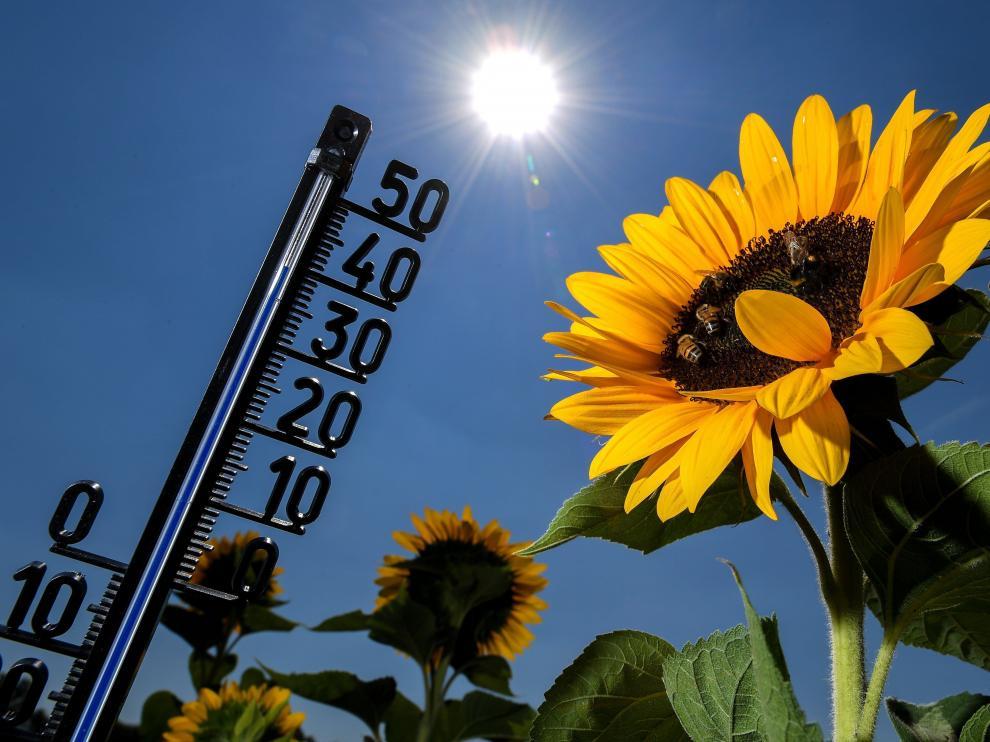 El aumento de las muertes por olas de calor se vería mitigado al limitar las emisiones de gases de efecto invernadero.