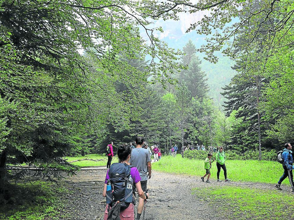 La extensión. El Parque Nacional de Ordesa y Monte Perdido, que estos días recibe a cientos de turistas, abarca actualmente 15.608 hectáreas. Su ampliación, que lleva años generando opiniones contrapuestas entre alcaldes, expertos y ecologistas, haría que se elevase por encima de las 20.000.
