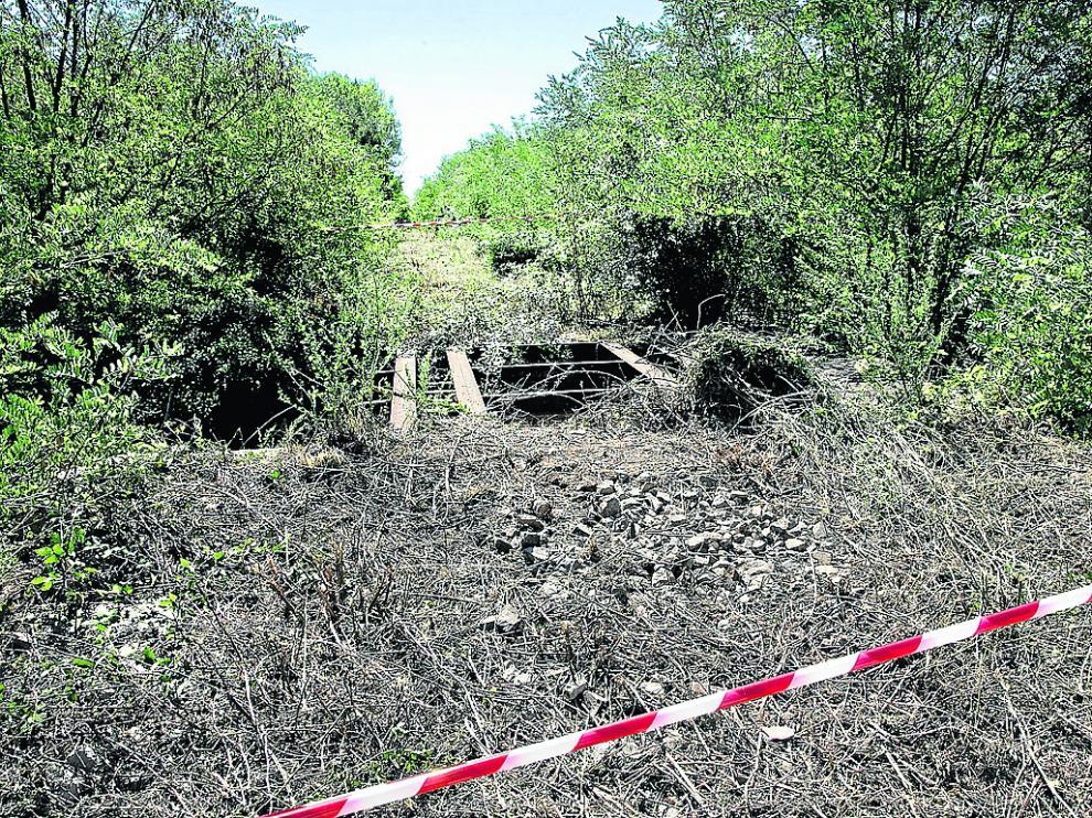 En el camino natural cercano a la localidad de Daroca se han localizado varios trabajos de desbroce