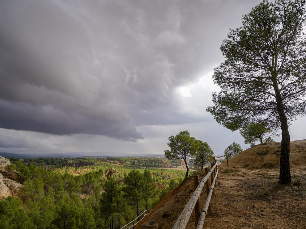 El parque de las Arcillas de Teruel, repoblado con pinos.