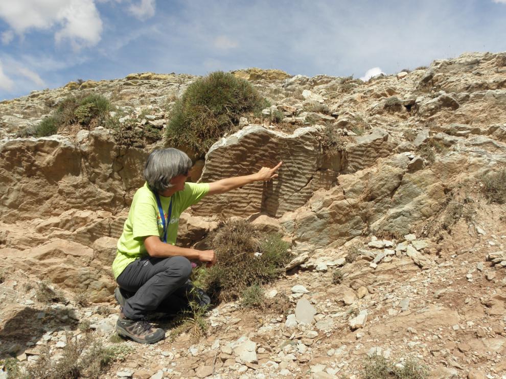 Imagen de huellas de ondas dejadas por el oleaje en las rocas de la Formación Aguilar del Alfambra, en sus afloramientos de Aguilar del Alfambra.