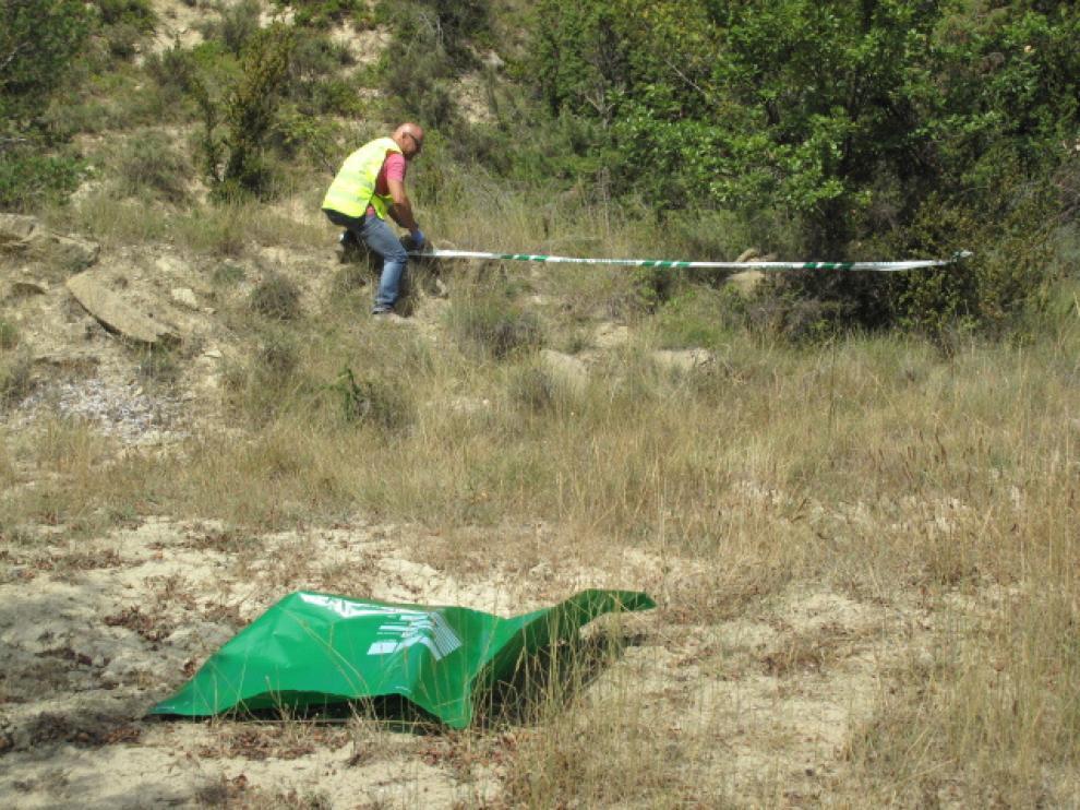 El Seprona localizó el cadáver del perro en avanzado estado de descomposición