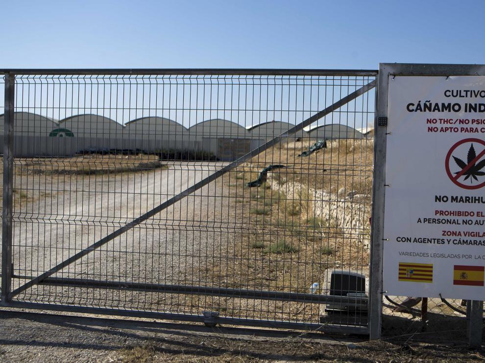 Los dueños del invernadero de cannabis han colocado carteles en la valla perimetral advirtiendo de que sus plantas tienen un uso industrial.