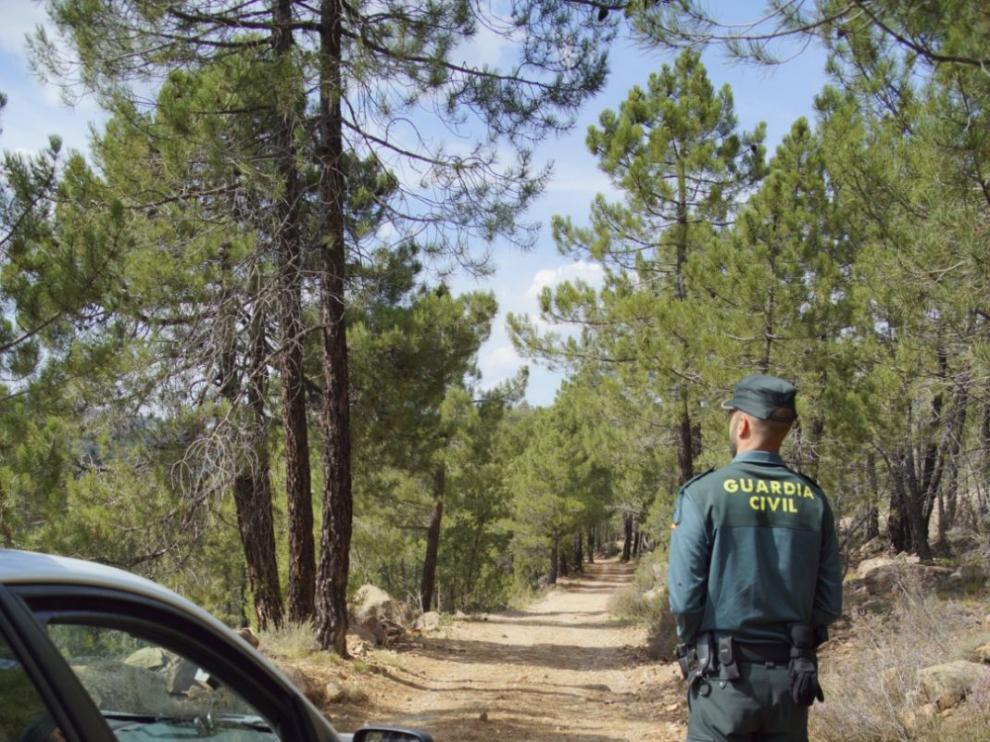 La Guardia Civil transmite consejos y normas para realizar la recogida de setas.