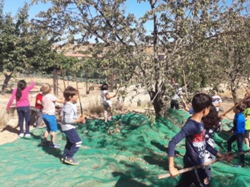 Niños de Calaceite, en contacto con almendros.