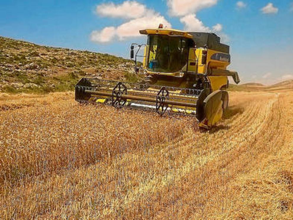 Un agricultor, en plena cosecha