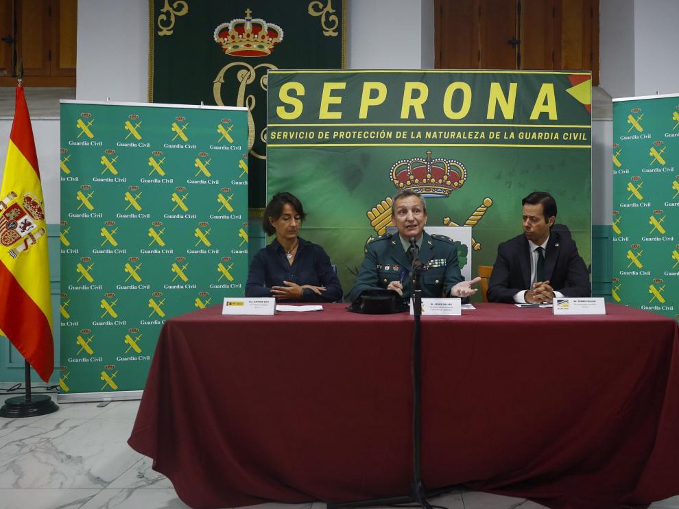 Rueda de prensa del Seprona para infromar sobre la operación Tarentelo.