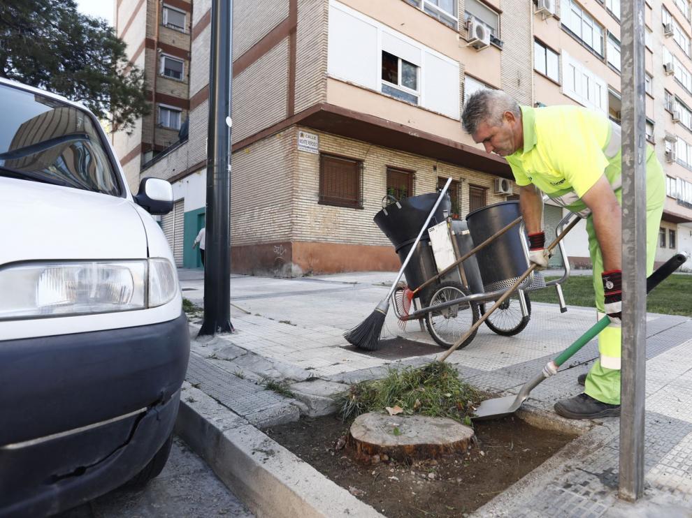 Limpieza de malas hierbas
