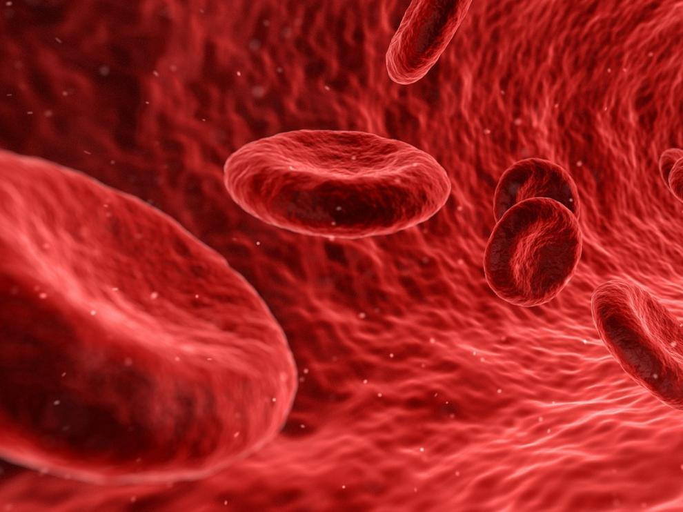 El colesterol puede provocar que la sangre no circule correctamente por las arterias.