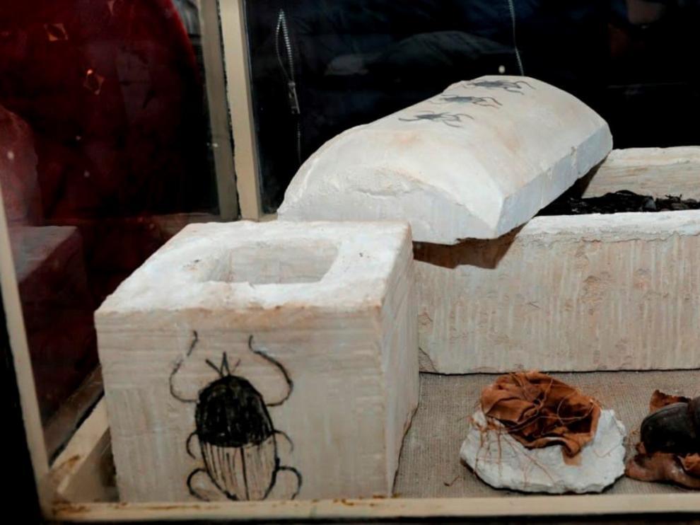 """Se han descubierto """"por primera vez"""" escarabajos momificados en esa área, así como decenas de momias de gatos y otros animales."""
