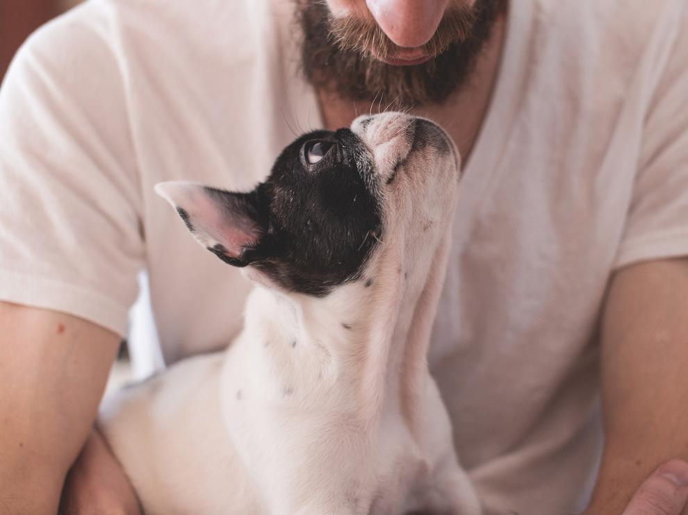 El amor entre un perro y su dueño es incalculable.