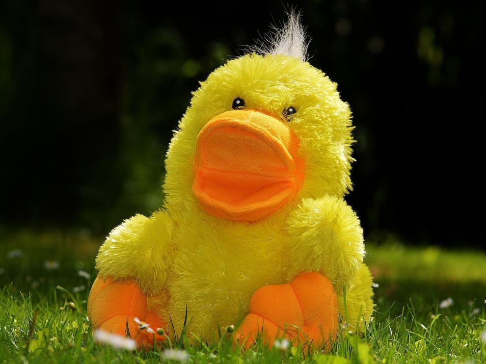 La 'mascota' consistía en un peluche de un pollo amarillo.