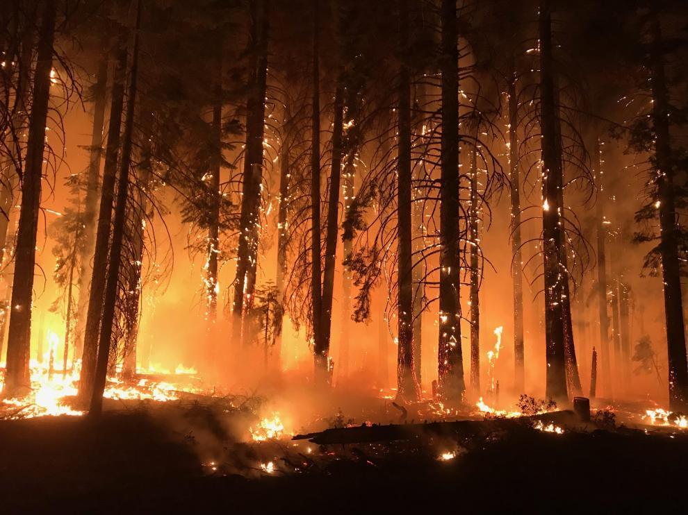 Incendio en California (EE. UU.)