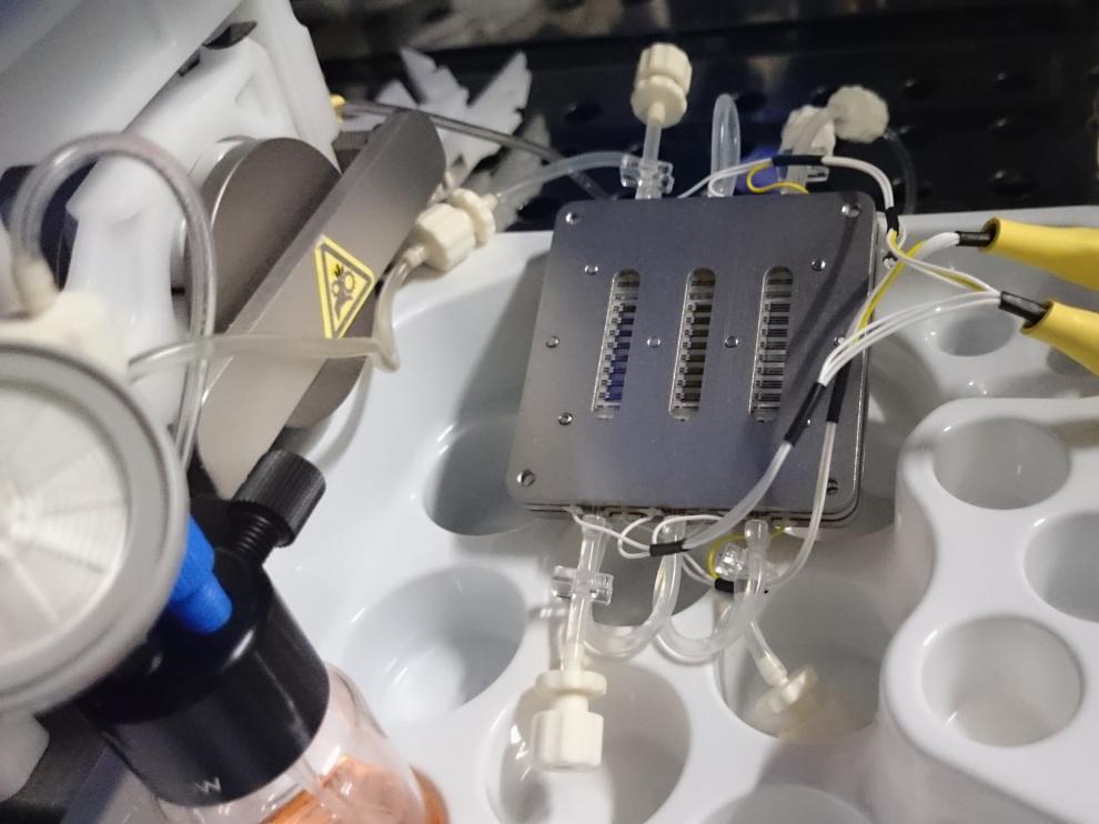 Dispositivo fluídico empleado para cultivar células renales en condiciones biomiméticas. La salud de las células se monitoriza en tiempo real gracias a un sensor de impedancia integrado en el dispositivo