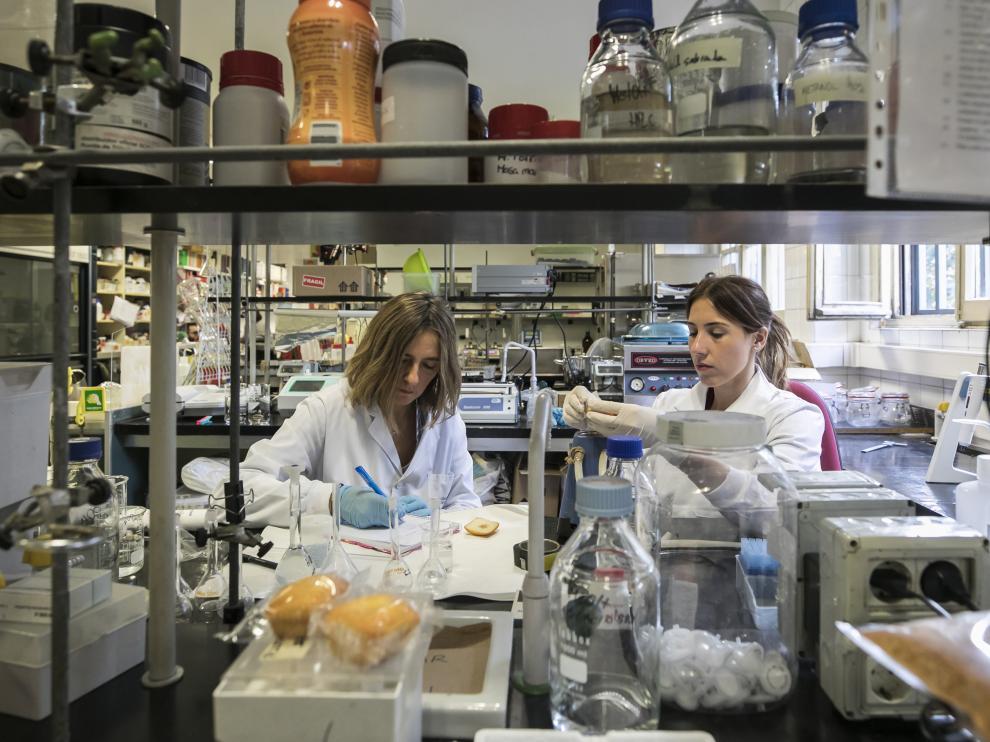 Grupo de investigación de alimentos de origen vegetal IA2