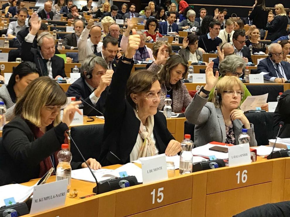La eurodiputada aragonesa Inés Ayala (PSOE), este jueves, en la votación de la enmienda de apoyo al ferrocarril de Teruel.
