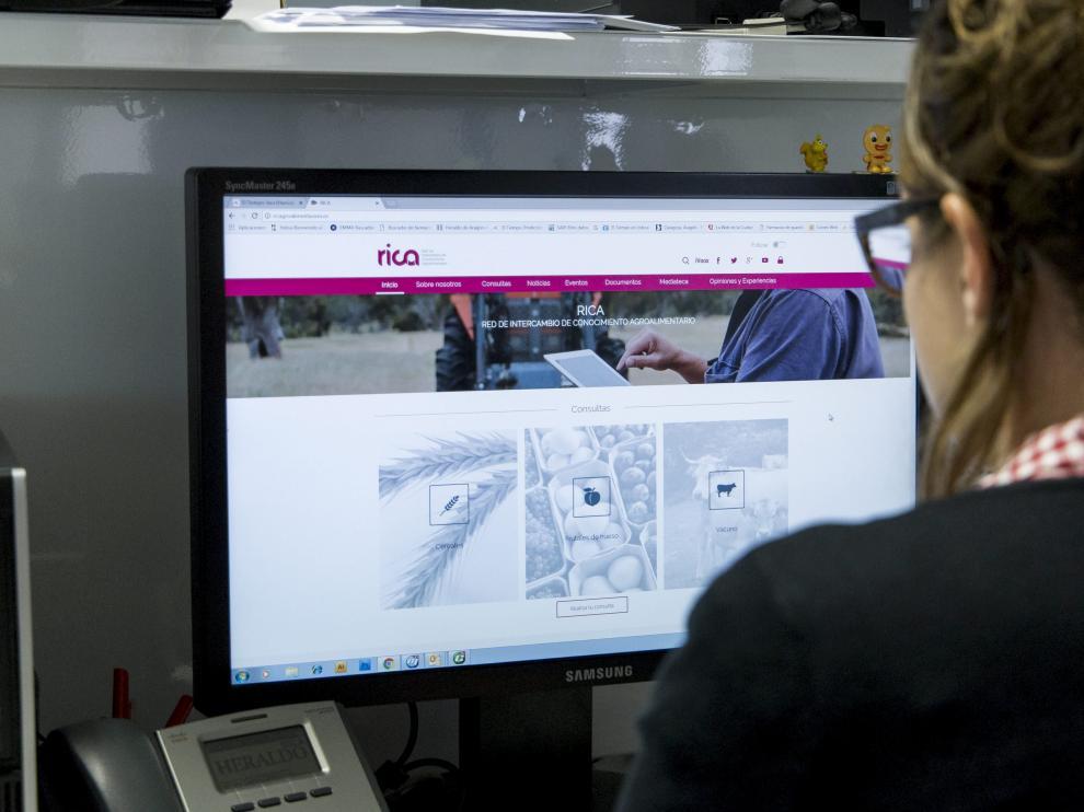 Una internauta consulta una página web