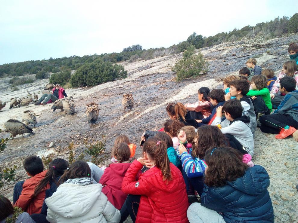 Los escolares se acercaron hasta el comedero de los buitres en Santa Cilia de Panzano.