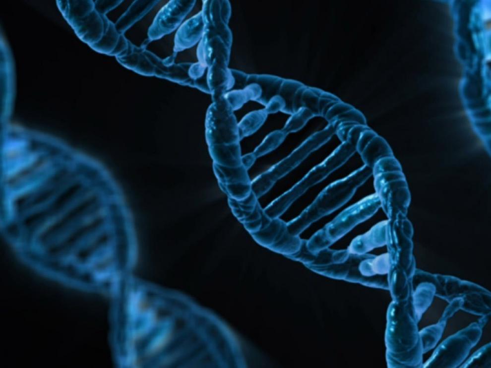 Hoy en día, en muchas de las enfermedades genéticas, se estudia un conjunto de genes, e incluso en algunas, como las discapacidades intelectuales se estudia el exoma completo.
