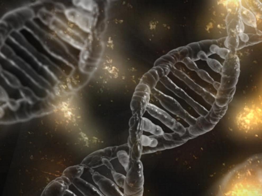 El perfil genético puede usarse para ayudar a diagnosticar una enfermedad, o saber cómo evoluciona o responde al tratamiento con medicamentos.