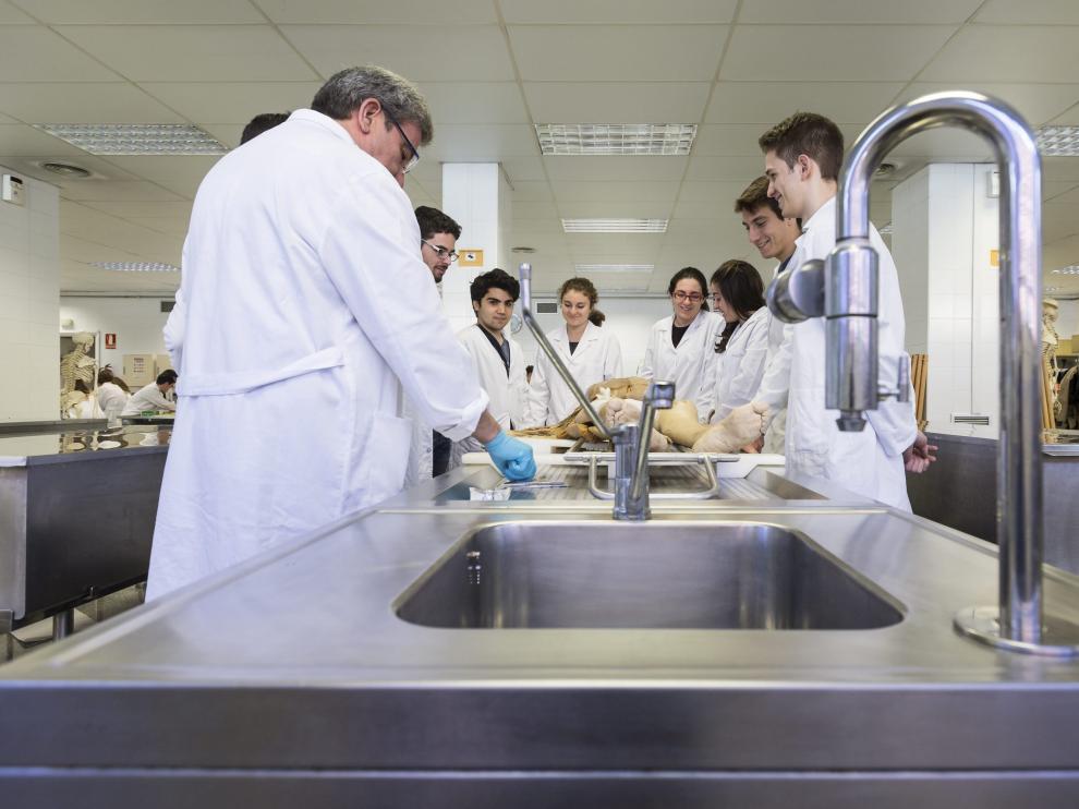 Un grupo de estudiantes de Medicina atiende las explicaciones de su profesor