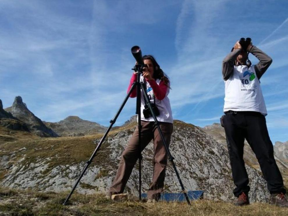 Dos técnicos del proyecto en uno de los puntos de observación de aves del Pirineo