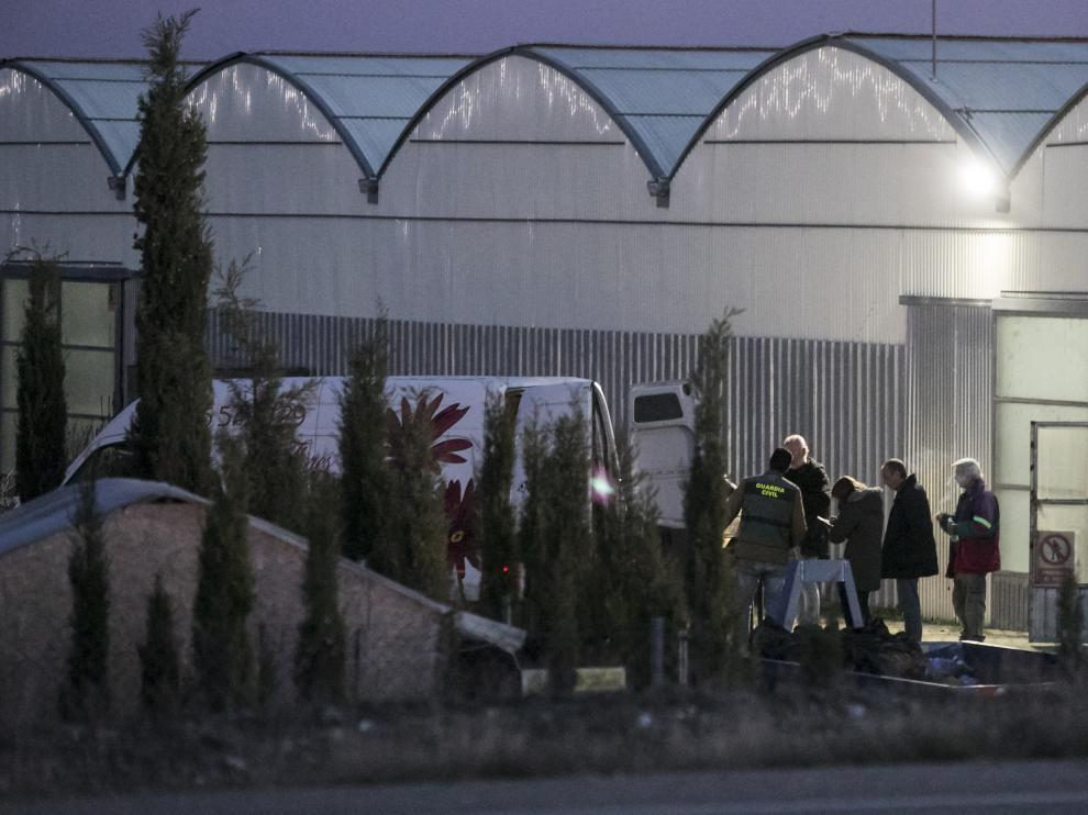 La Guardia Civil estuvo a principios de diciembre en Tauste destruyendo las plantas de cannabis, un trabajo al que dedicó más de diez horas.
