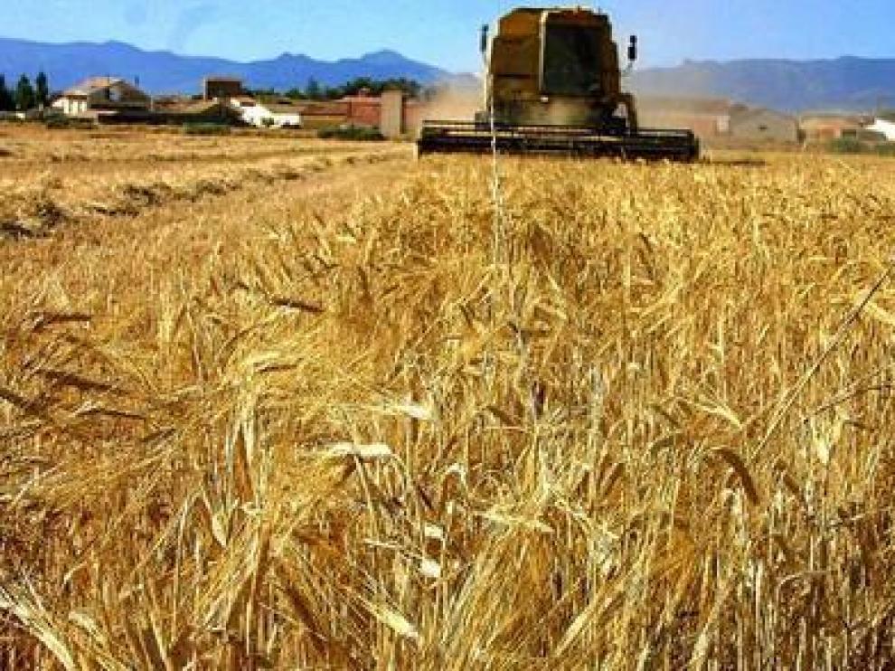 Los costes aumentan a un ritmo muy superior al valor de la producción en Aragón.