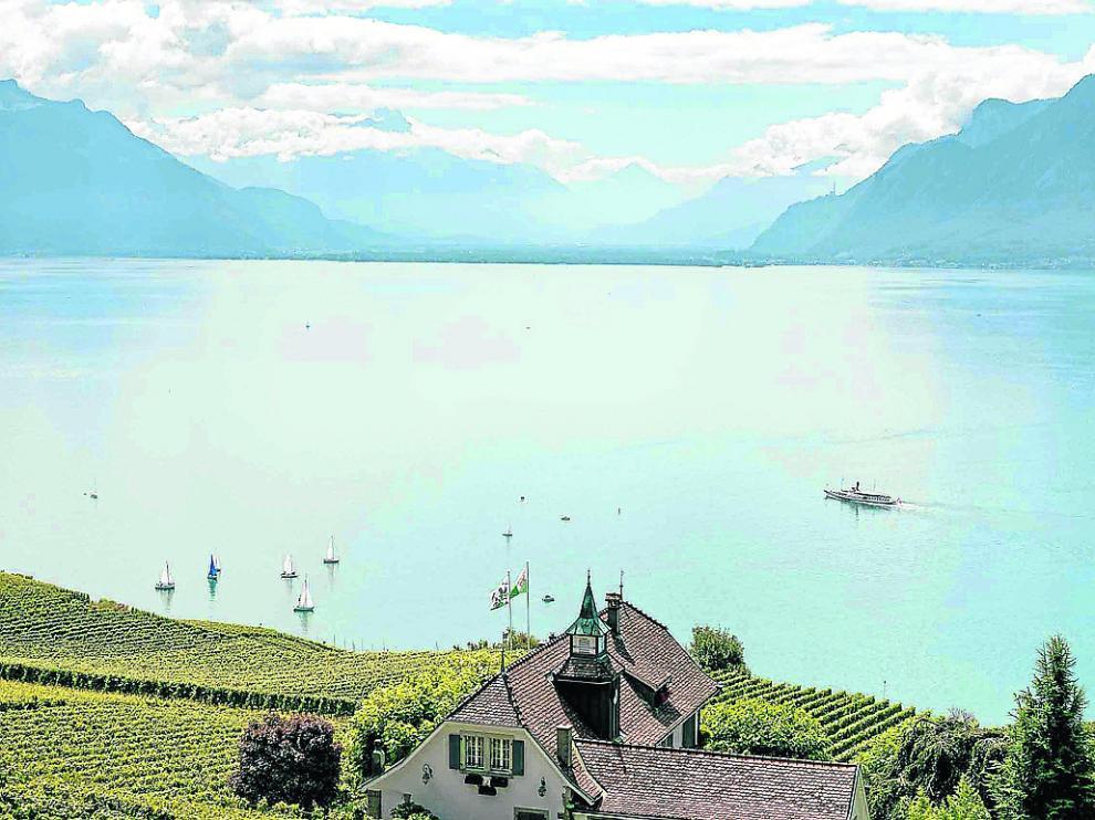 Viñedos en terraza típicos a orillas del lago Lemán, en el cantón suízo de Vaud.