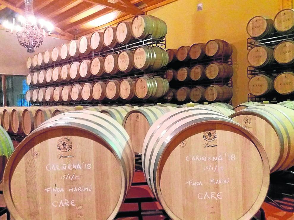 El nuevo vino elaborado con las uvas cariñena de la vendimia de 2018 ya reposa en barricas.