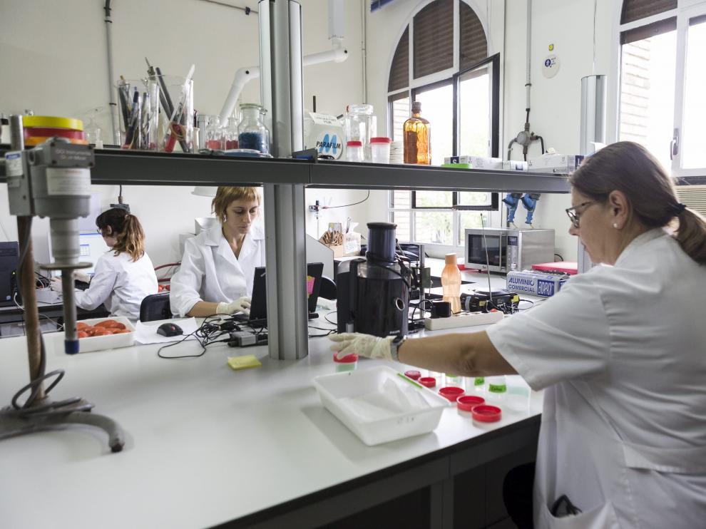 Un laboratorio del Aula Dei.