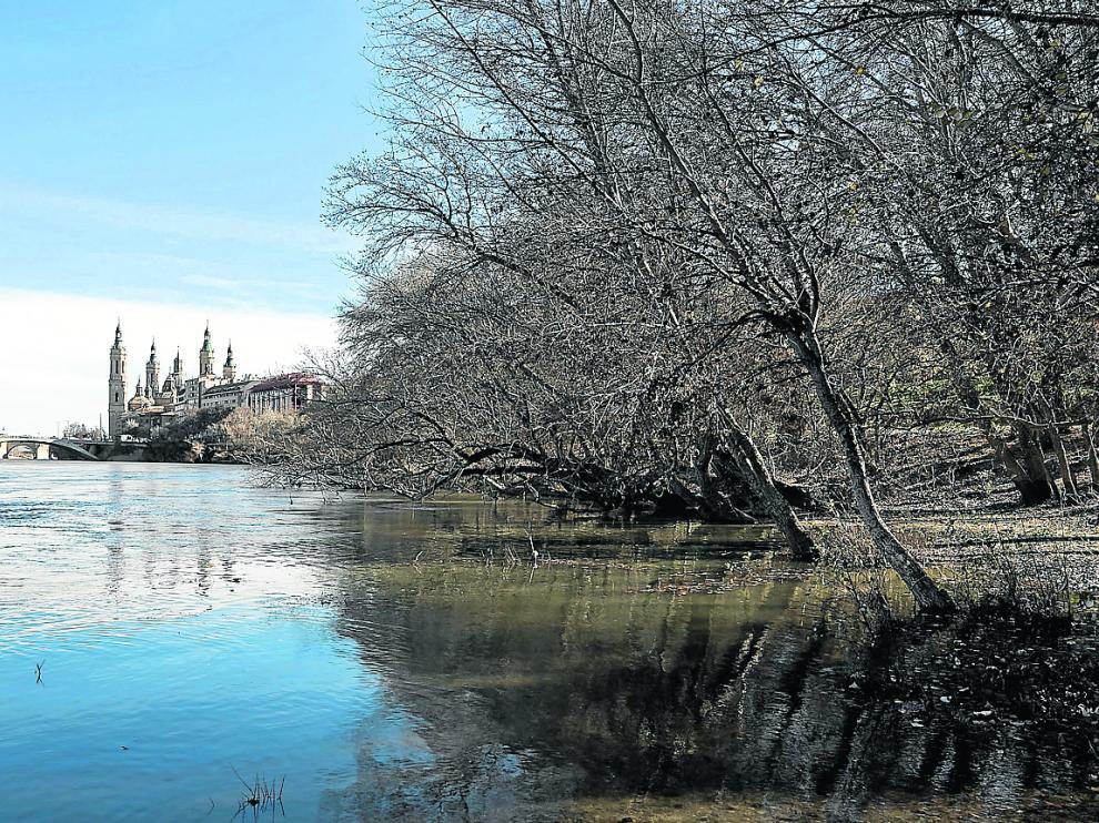 El Ebro superaba ayer los 300 metros cúbicos por segundo a su paso por Zaragoza.