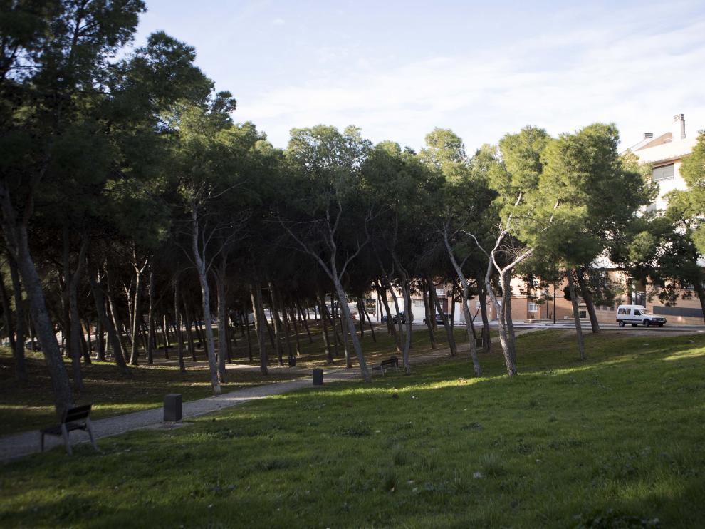 Imagen de parte de la parcela, junto a la calle Cuarta Avenida, convertida en un parque de pinar.