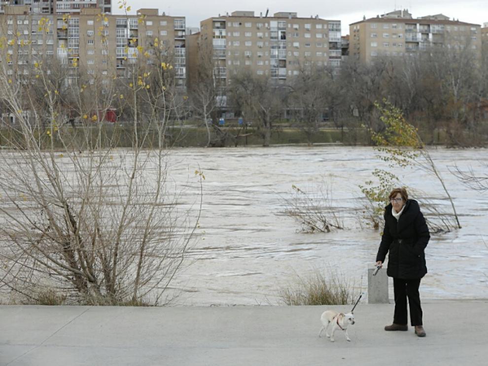 La crecida del Ebro a su paso por Zaragoza.
