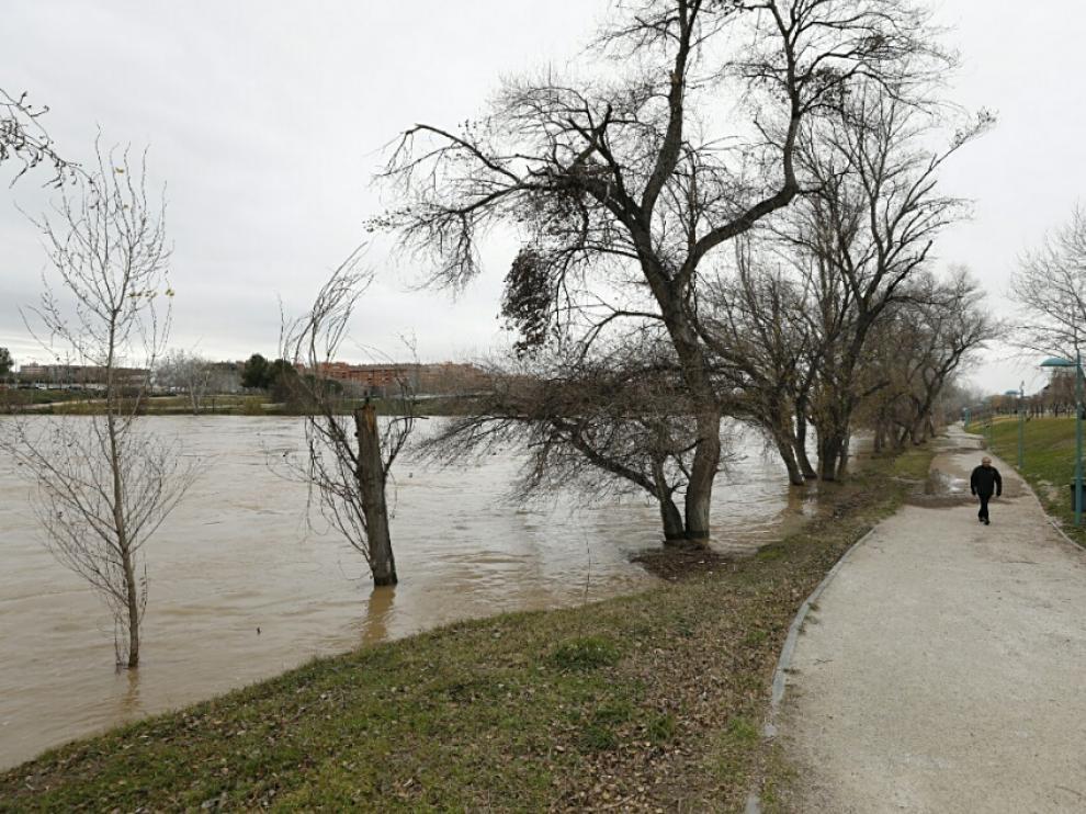 La crecida del Ebro llega a Zaragoza