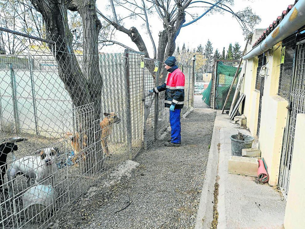 La saturación de la perrera hace que los parques de recreo (izquierda), sin techo y muy precarios, se usen como alojamientos fijos